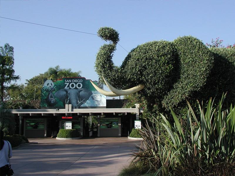 Zoo San Diego aviotag aviokarte